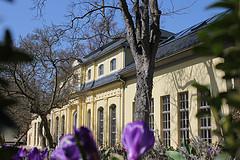 Orangerie und Teehaus 2013